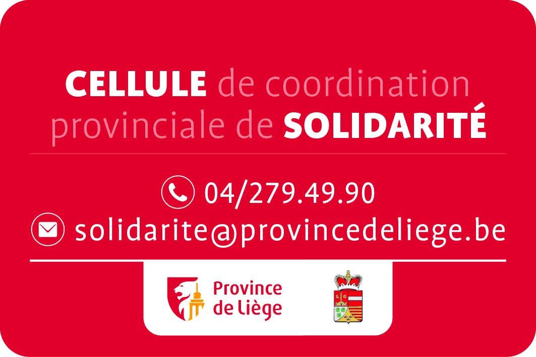 Cellule de Coordination Provinciale de Solidarité. (Suite)...